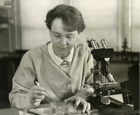Figure 21. Barbara McClintock, Cornell University geneticist awarded the Nobel Prize in 1983.