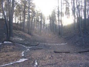 More canyon burn