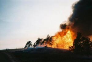 flames2web